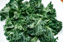 Green Kale In Ceramic Bowl. Se...