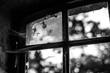 Leinwandbild Motiv Close-up Of Broken Glass Window