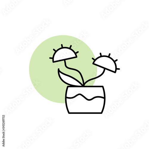 Photo Carnivorous, plant icon