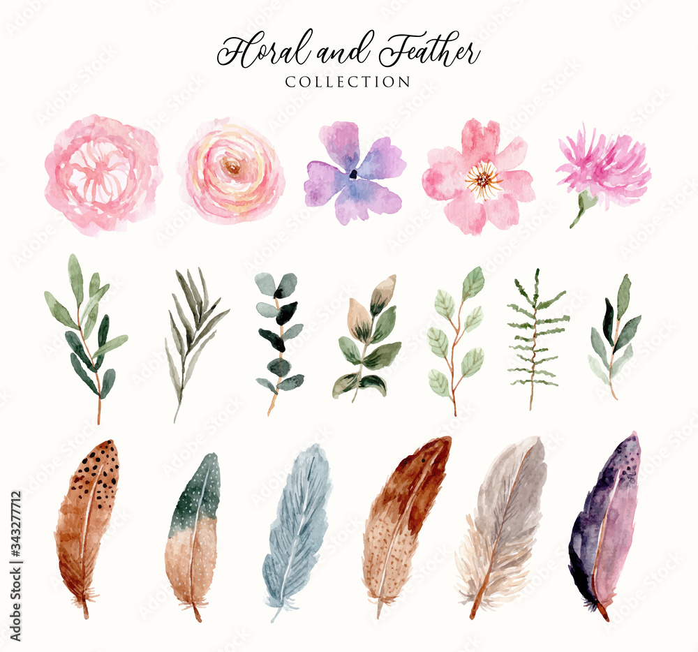 Fototapeta watercolor floral and feather collection