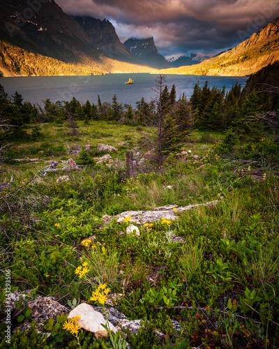 Vászonkép glacier national park
