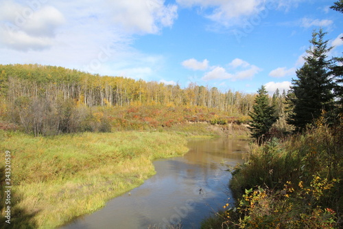 Beauty Along The Backcountry, Whitemud Park, Edmonton, Alberta Canvas Print