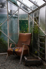 Abandoned Damaged Armchair In Greenhouse