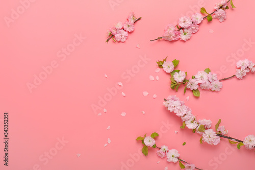 Fotografia Beautiful blossoming branches on color background