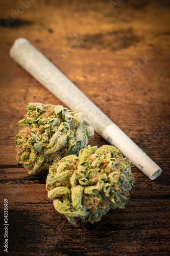 The cannabis strain 'AK-47' with a preroll from Washington state. Canvas Print