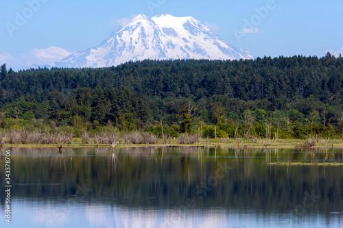 Fototapeta Scenic View Of Lake In Forest obraz na płótnie