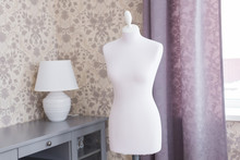 Female Mannequin In The Room. ...
