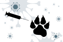 Vector Silhouette Of Animal Wi...