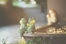 Close-up Of Frog Figurines On ...