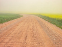 Dirt Road Along Countryside La...