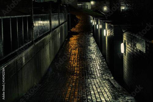 Stampa su Tela View Of Illuminated Alley At Night