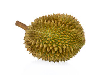 Durian Tropical Fruit Isolated...