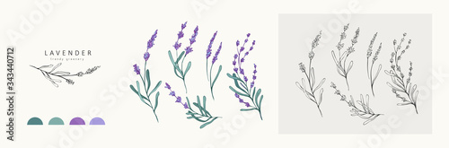 Photo Lavender logo and branch