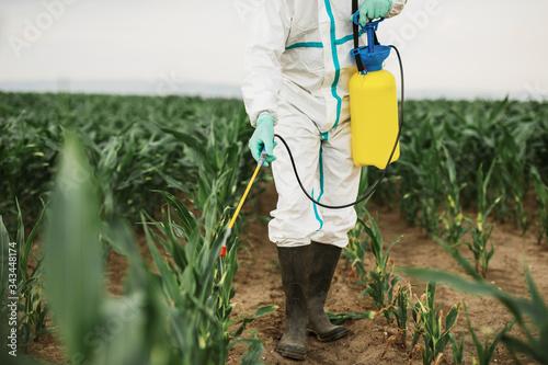 Fotografie, Obraz Industrial agriculture theme