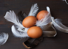 Three Brown Whole Chicken Eggs In The Middle Of White Feathers