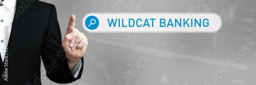 Wildcat Banking Tapéta, Fotótapéta