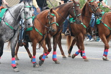 People Riding Horses At Street On Fourth Of July Independence Day Parade