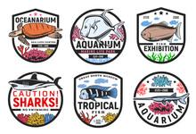 Oceanarium, Undersea World Aqu...