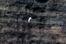 Faszination Färöer - Inseln ...