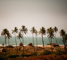 Beaches Of Goa, Western India