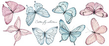 Elegant Collection Of Watercolor Hand Drawing Butterflies And Dragonflies, Vintage, Delicate, Nature, Perfect For Wedding Invitation, Textile Print, Scrapbooking, Pattern, And  Poster