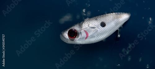 Photo Fishing bait underwater in blue clear water.