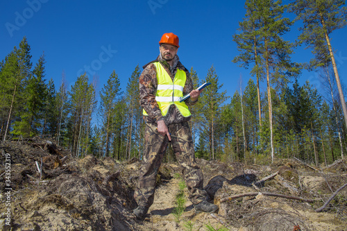 Valokuvatapetti A forester in a helmet and vest checks the quality of tree planting