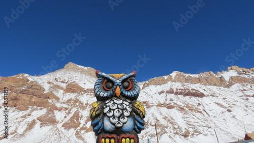 Coruja azul neve sem edição Canvas Print