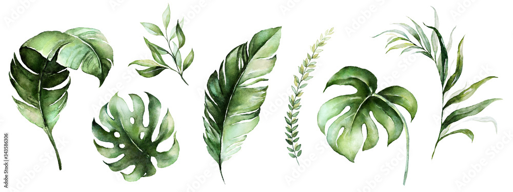 Fototapeta Watercolor tropical floral illustration set with green leaves for wedding stationary, greetings, wallpapers, fashion, backgrounds, textures, DIY, wrappers, postcards, logo, etc. - obraz na płótnie