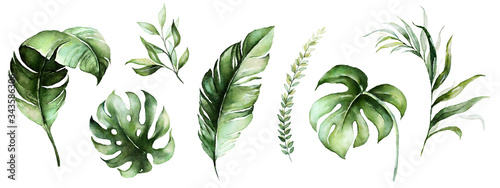 Obraz Watercolor tropical floral illustration set with green leaves for wedding stationary, greetings, wallpapers, fashion, backgrounds, textures, DIY, wrappers, postcards, logo, etc. - fototapety do salonu