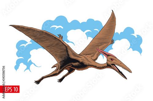 Pterodactyl or pteranodon Tablou Canvas