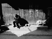 Homeless Man Sitting With Dogs Against Wall
