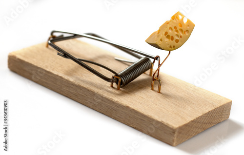 isolated image of a mousetrap with cheese Canvas