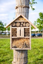 Insect Hotel . Insect Hotel In Park. Natural Scene.