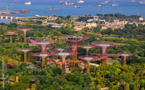 Aerial view of the Supertree Grove in Gardens by the Bay, popular tourist attrac Canvas Print