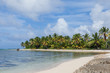 Beach landscape with sand, white foam waves, palm trees, blue sky, turquoise water and clouds, paradise Caribbean coast of Dominican republic