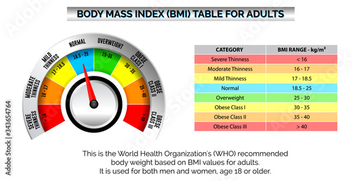 bmi index scale classification or body mass index chart information concept Wallpaper Mural