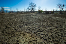 Dried Cracked Earth Aridity Gr...