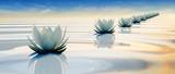 3d kwiat lotosu na spokojnej wodzie tętnienia