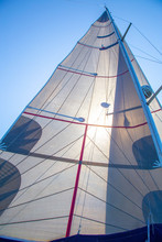 A Sail Against The Sky, The Wi...