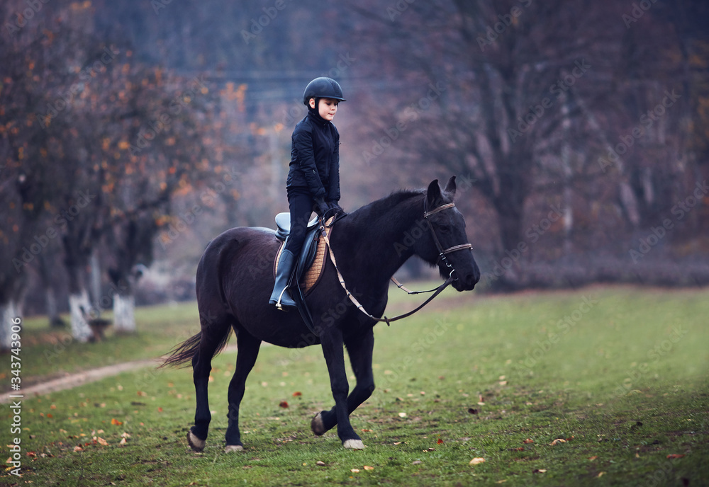 Fototapeta young boy, kid is taking a horse riding lesson, equestrian sport, horseback rider outfit