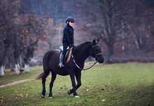 Young Boy, Kid Is Taking A Horse Riding Lesson, Equestrian Sport, Horseback Rider Outfit