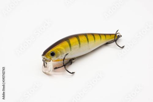 Photo fishing bait isolated on white