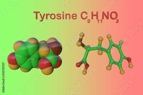 Photo Molecular model of l-tyrosine or tyrosine