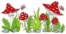 Amanita Mushroom Sketch Black ...