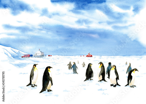 South pole painted in watercolor Wallpaper Mural