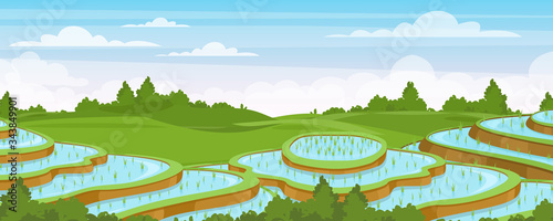 Fototapeta Rice field landscape vector illustration. Cartoon flat rural farmland scenery with green paddy rice terraces, terraced farmer plantation for rice cultivation in water, asian agriculture background obraz