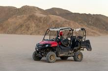 Baggi On A Desert
