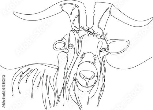 testa di capra disegnata a singola linea continua Fototapet