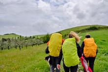 Pilgrims, Backpackers Walking ...